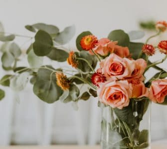 image of best roses indoors for apartment