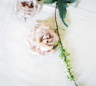 image of a rose how to grow a rose from your wedding bouquet
