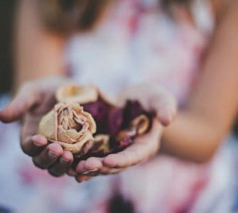 image of girl holding roses to show how to grow rose petals from seed