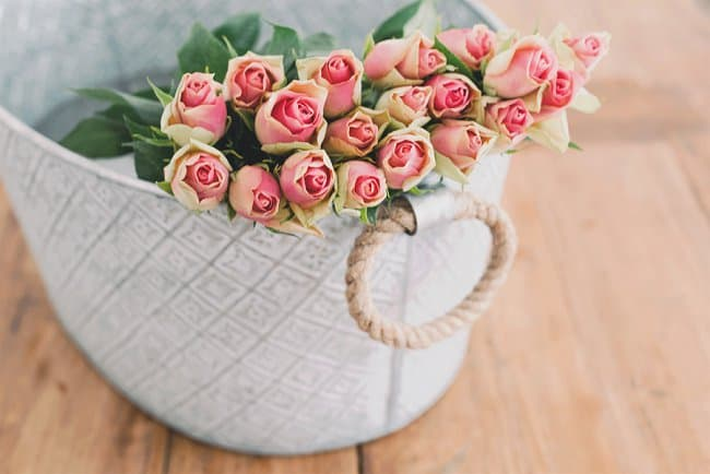 image of fresh roses for rose water