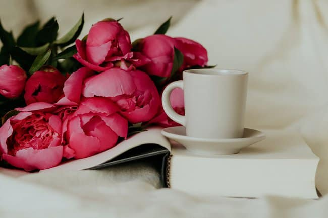 image of do roses like coffee grounds