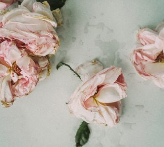image of pruned roses, how to prune roses in the fall