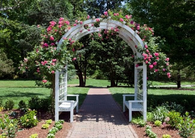 image of rose arbor arch trellis