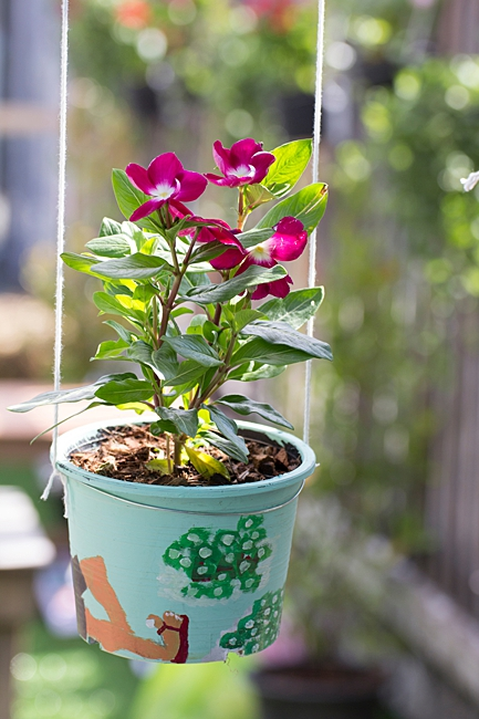 image of a bucket used as a planter sand pail planter