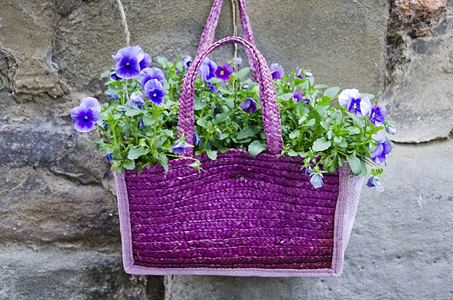 image of household item used as planter, a purple bag planter