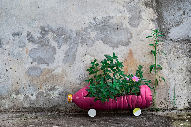 image of plastic bottles recycled to use as household planters