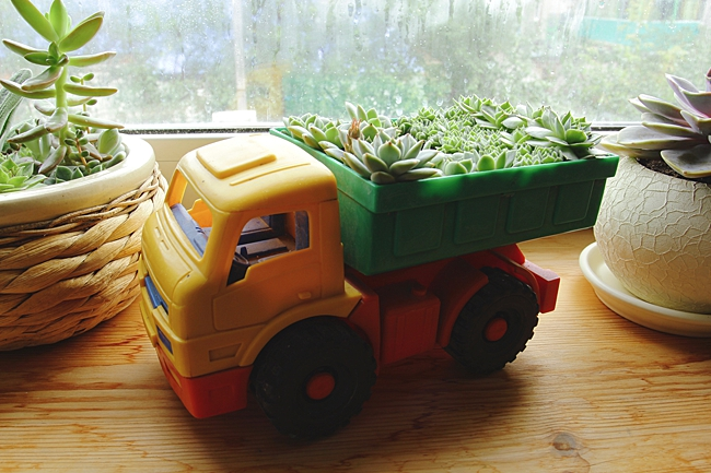 image of toy planter household items to use as planters
