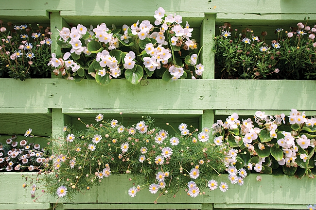 image of mint green pallet planter diY upcycled from household item