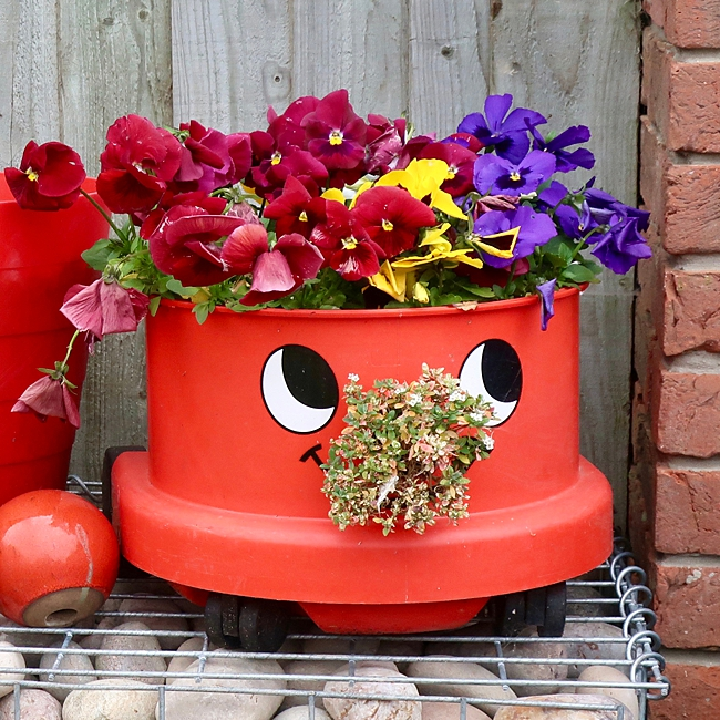 image of the best household item to use as a planter
