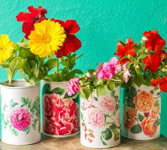 image of the best household items to use as planters, budget friendly and creative