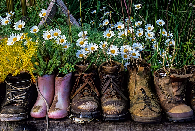 image of vintage boots household items used as planters