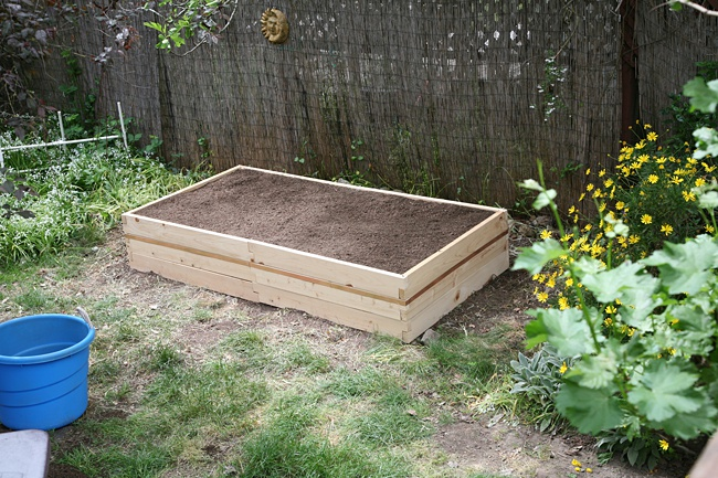 image of simple raised rose bed