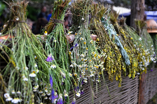 image of dried hanging herbs for patio space