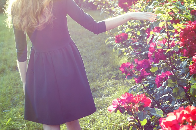 image of woman in rose garden how to plant design and grow a small rose garden